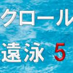 クロール遠泳5